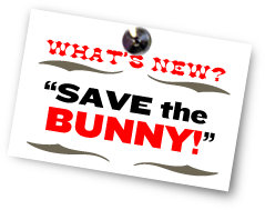 What's New - Save The Bunny
